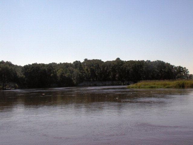 1019 Old River Road #0, Darien, GA 31305 (MLS #1570399) :: Coastal Georgia Living