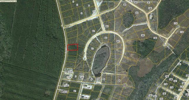(Lot 8) Hwy. 259, Waynesville, GA 31566 (MLS #1571256) :: Coastal Georgia Living