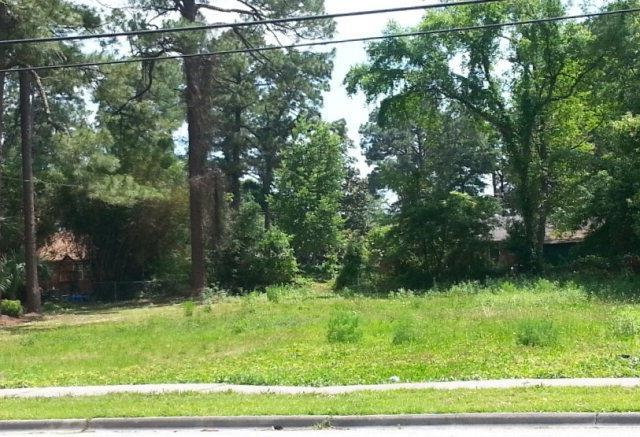 2308 Parkwood Drive, Brunswick, GA 31520 (MLS #1571400) :: Coastal Georgia Living