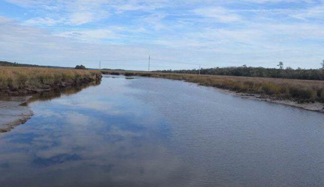 White Oak Creek Drive, Waverly, GA 31569 (MLS #1571785) :: Coastal Georgia Living