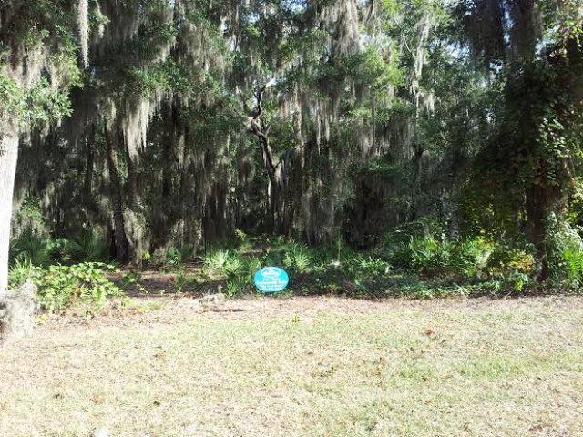 27 Carnochan Drive, Darien, GA 31305 (MLS #1572223) :: Coastal Georgia Living