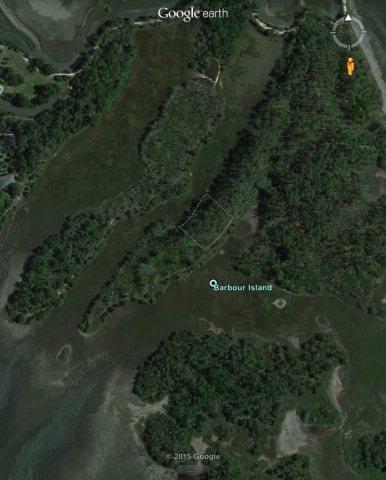 Barbour Island, Darien, GA 31305 (MLS #1575494) :: Coastal Georgia Living