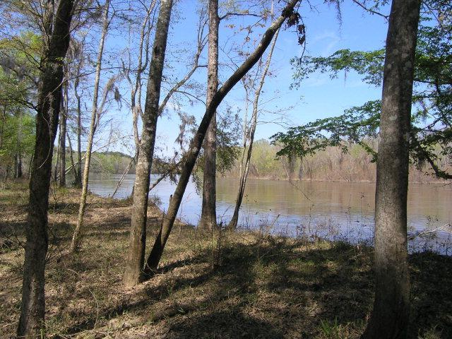 Lot 6 Addies Alley Island, Jesup, GA 31545 (MLS #1575617) :: Coastal Georgia Living