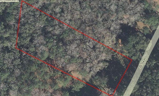 171 Choctaw Road, Brunswick, GA 31525 (MLS #1576354) :: Coastal Georgia Living