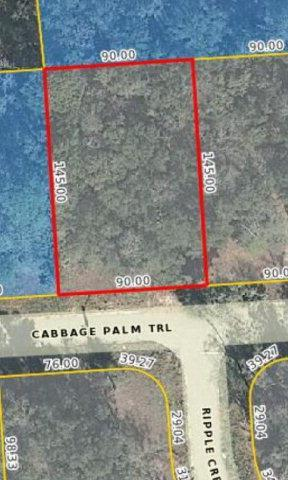 141 Cabbage Palm Trail - Photo 1