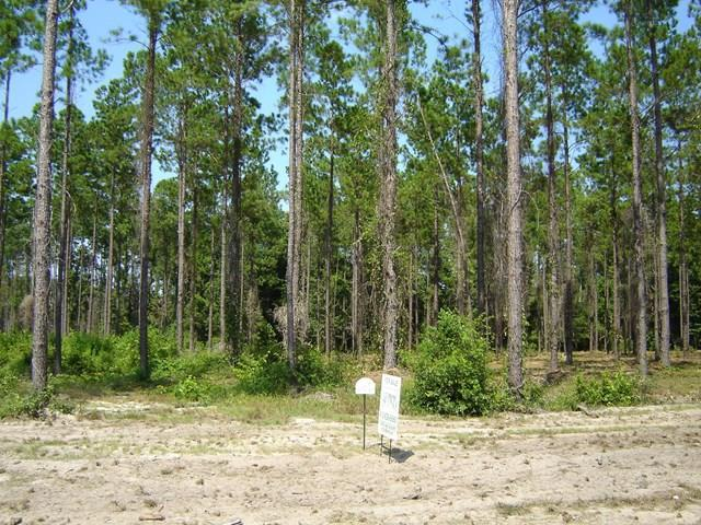 Lot 42 Marsh Way - Spring Cove, Townsend, GA 31331 (MLS #1580692) :: Coastal Georgia Living