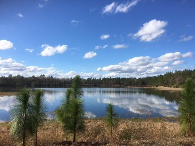Watermark, Mt. Pleasant, GA 31543 (MLS #1581811) :: Coastal Georgia Living