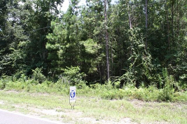 116 Lambright Lane, Brunswick, GA 31523 (MLS #1584643) :: Coastal Georgia Living