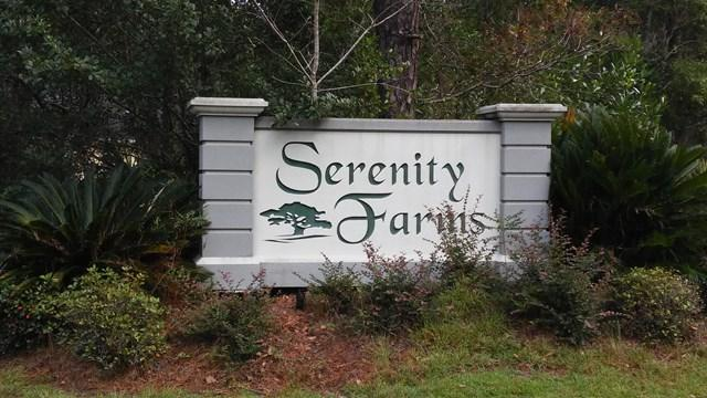 Lot #10 Serenity Farms Road, Woodbine, GA 31569 (MLS #1585571) :: Coastal Georgia Living