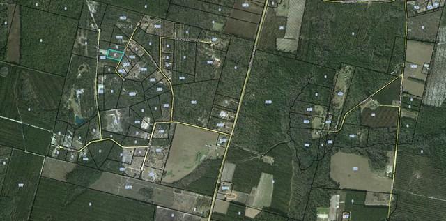1244 Hondo Road, Nahunta, GA 31553 (MLS #1586644) :: Coastal Georgia Living