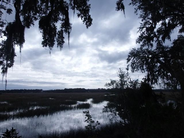 0 Julienton Drive NE, Townsend, GA 31331 (MLS #1586941) :: Coastal Georgia Living