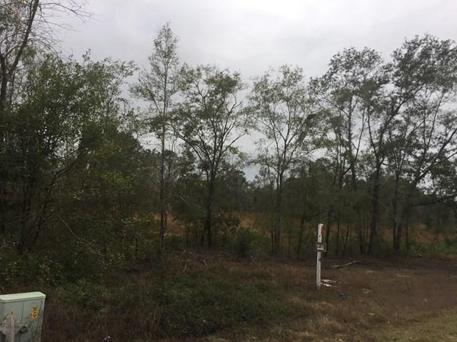 Hwy 32 Hwy32/Post Road, Nahunta, GA 31553 (MLS #1587654) :: Coastal Georgia Living