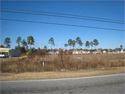 2128 Perry Lane Road, Brunswick, GA 31525 (MLS #1603722) :: Coastal Georgia Living