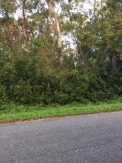 0 E Riverview Drive Lot 67, St. Marys, GA 31558 (MLS #1604470) :: Coastal Georgia Living