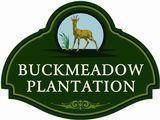 46 Buckmeadow Circle, Brunswick, GA 31525 (MLS #1604874) :: Coastal Georgia Living