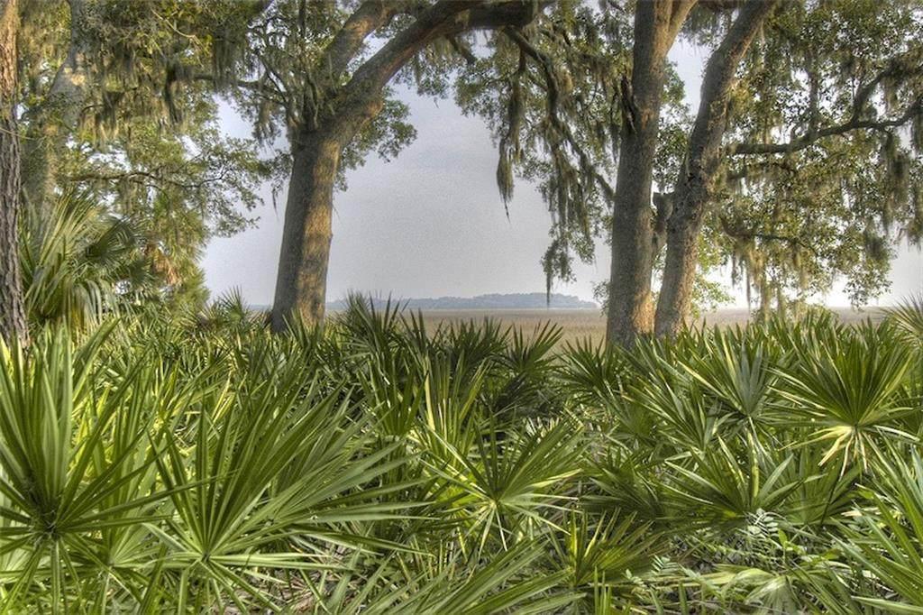 154 Stillwater Drive - Photo 1