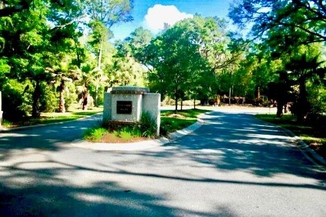 204 Township Bluff Circle, St. Simons Island, GA 31522 (MLS #1611829) :: Coastal Georgia Living