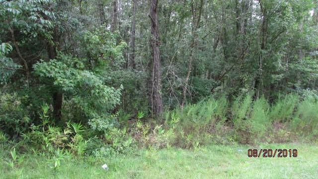 1256 NE Doodle Hill Road, Townsend, GA 31331 (MLS #1612291) :: Coastal Georgia Living