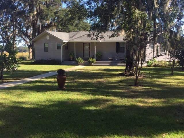 1015 Chimney River Drive, Shellman Bluff, GA 31331 (MLS #1612604) :: Coastal Georgia Living
