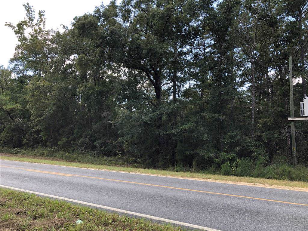 16 Highway 259 - Photo 1