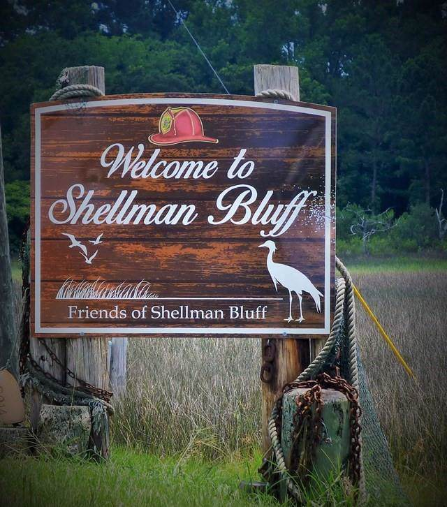 1096 Britts Lane NE, Shellman Bluff, GA 31331 (MLS #1614518) :: Coastal Georgia Living