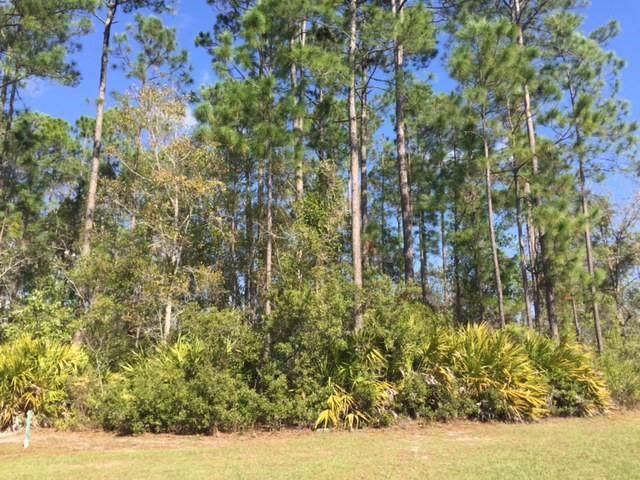 0 Serpentine Drive, St Marys, GA 31558 (MLS #1614548) :: Palmetto Realty Group