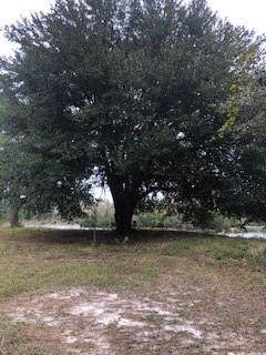 Lot 29R Lake Deborah Road, Folkston, GA 31537 (MLS #1614679) :: Coastal Georgia Living