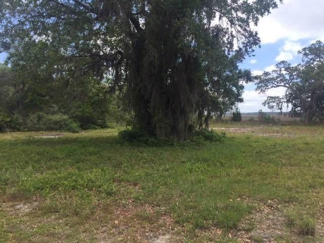 226 Cooper's Point Drive, Shellman Bluff, GA 31331 (MLS #1615386) :: Palmetto Realty Group