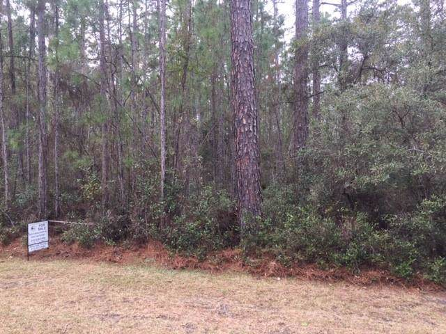 Lot 224 Refuge Way Drive, Townsend, GA 31331 (MLS #1615415) :: Coastal Georgia Living