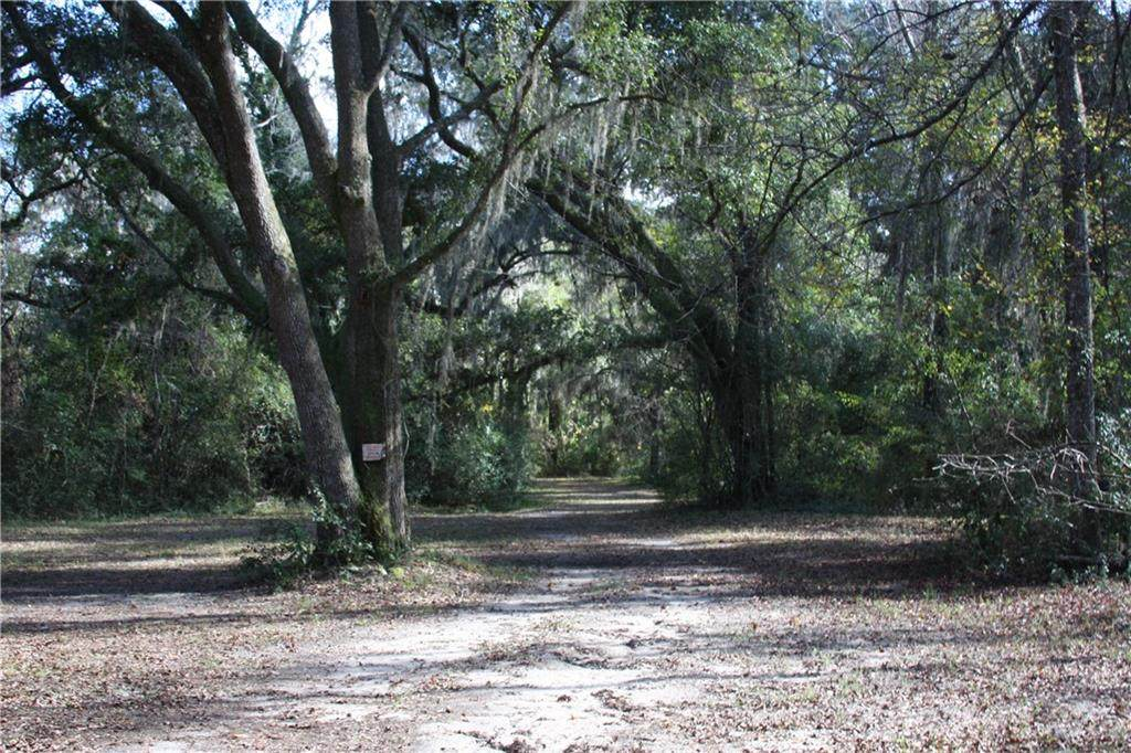 0 Joseph Wiggins/Mineral Springs Rd Road - Photo 1