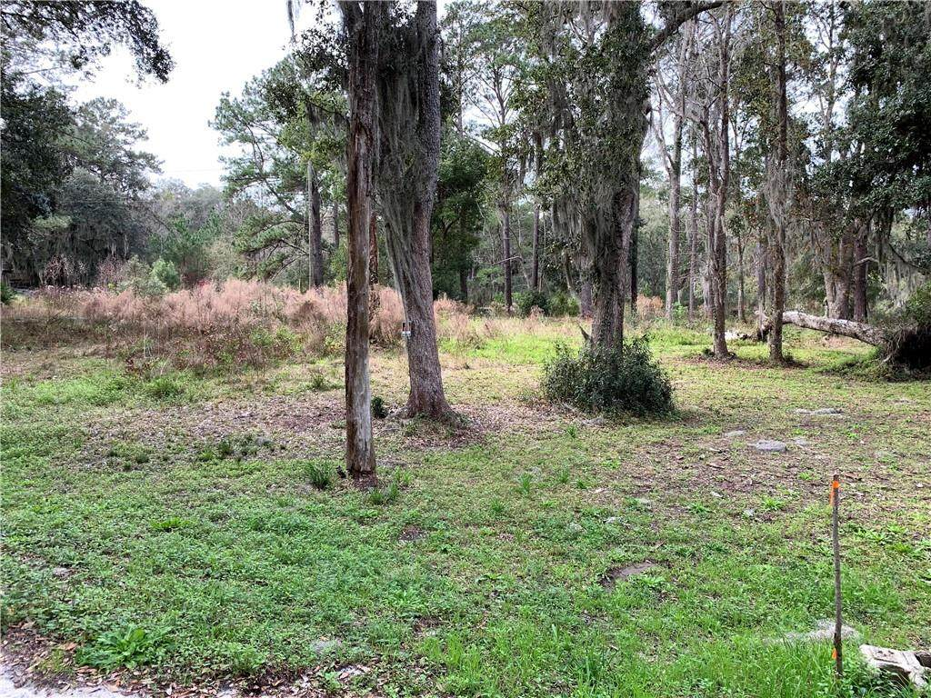 Lot 5 & 6 Oneal Drive - Photo 1