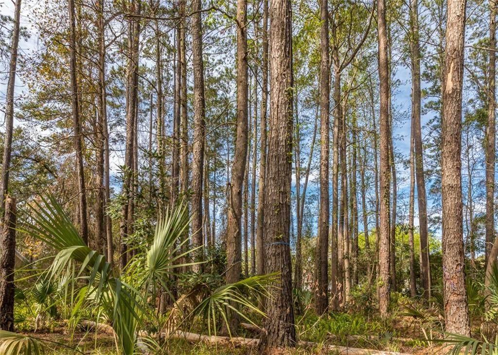 320 Oak Grove Island Drive - Photo 1