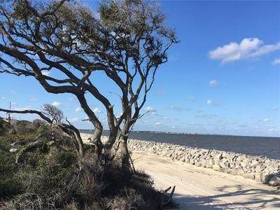 1175 N Beachview Drive #263, Jekyll Island, GA 31527 (MLS #1620100) :: Coastal Georgia Living