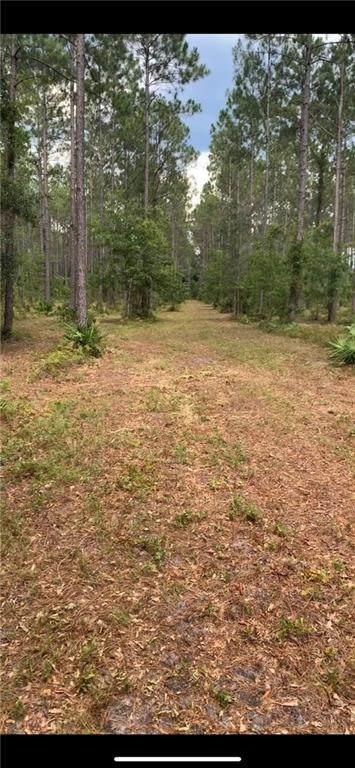 793 Post Road, Mt. Pleasant, GA 31543 (MLS #1620466) :: Coastal Georgia Living