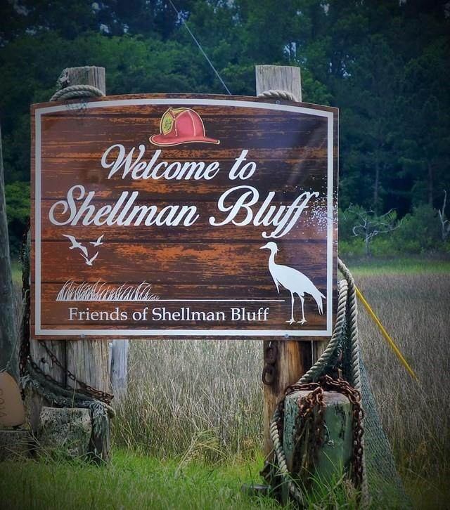 2 Old Shellman Bluff Road NE, Shellman Bluff, GA 31331 (MLS #1620469) :: Coastal Georgia Living