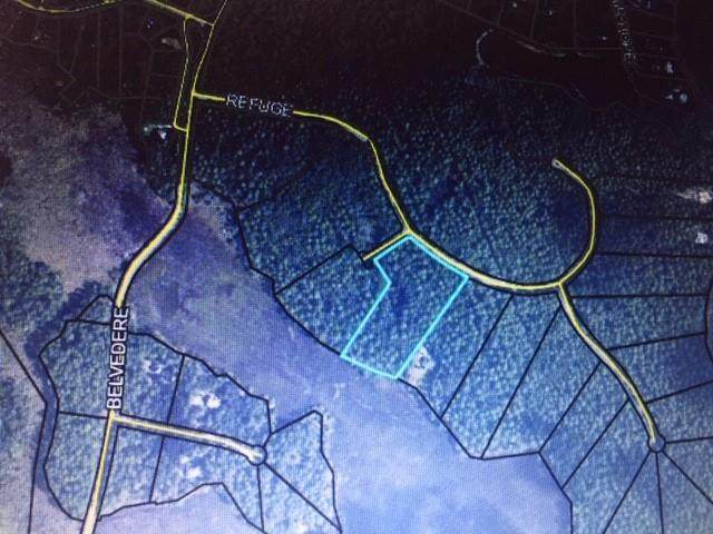 Lot 221 Refuge Way Drive, Townsend, GA 31331 (MLS #1623086) :: Coastal Georgia Living
