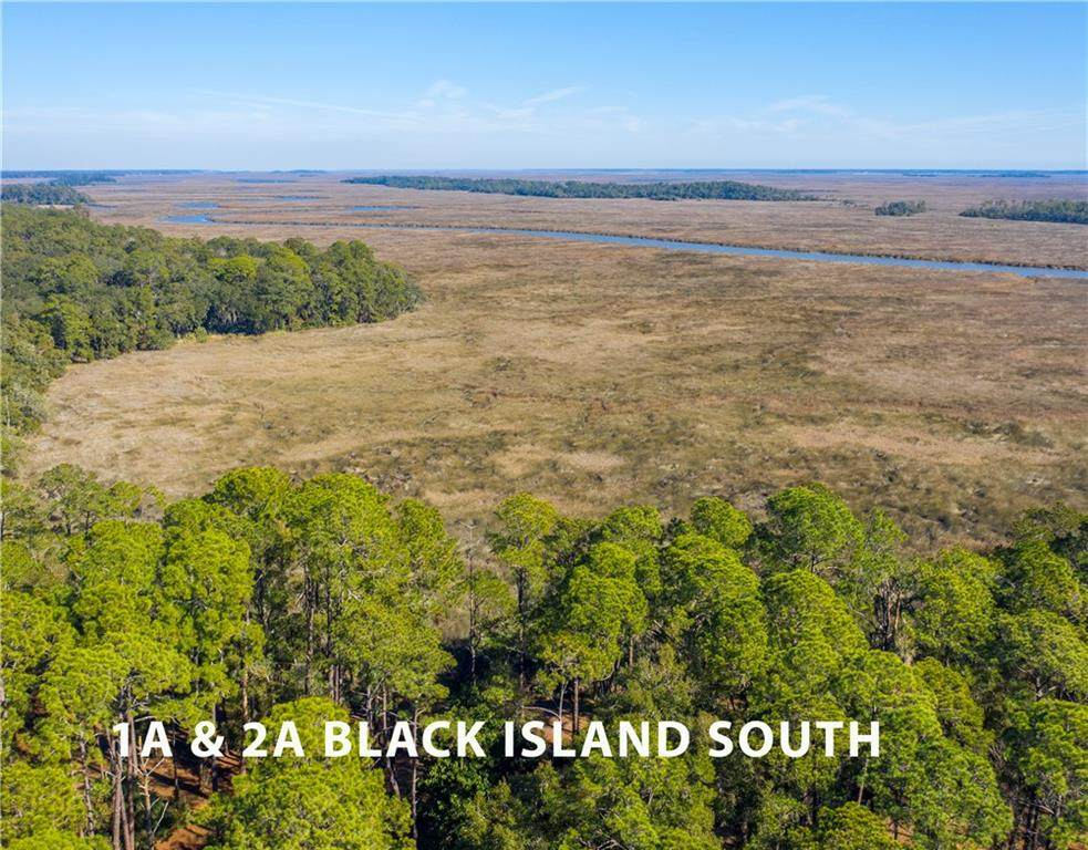 Lot 1A & 2A Black Island Road - Photo 1