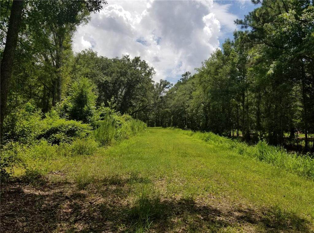 539 Green Swamp Rd Road - Photo 1