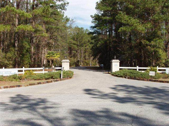 Lot 80 Eagle Neck Drive, Townsend, GA 31305 (MLS #1627741) :: Coastal Georgia Living