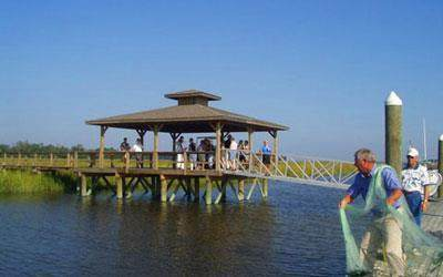 562 Woodstork Drive NE, Shellman Bluff, GA 31331 (MLS #1629153) :: Coastal Georgia Living