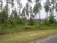 185 Mt Pleasant Road, Hortense, GA 31543 (MLS #1629633) :: Coastal Georgia Living