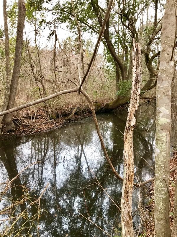 6 Greenwood Plantation, Darien, GA 31305 (MLS #1579572) :: Coastal Georgia Living