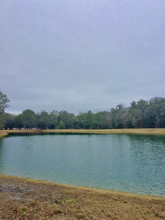 899 Marsh View Drive, Shellman Bluff, GA 31331 (MLS #1587498) :: Coastal Georgia Living
