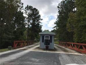 Lot 21 Black Cypress Drive, Darien, GA 31305 (MLS #1621197) :: Coastal Georgia Living