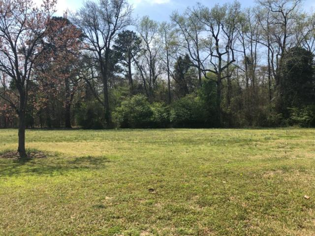 106 Aurora Lane, Goldsboro, NC 27530 (#70835) :: The Beth Hines Team