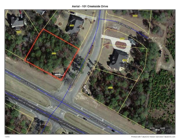 101 Creekside Drive, Goldsboro, NC 27534 (#71655) :: The Beth Hines Team