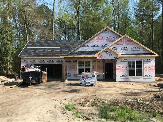 311 Phillips Ridge Lane, Goldsboro, NC 27530 (#72767) :: The Beth Hines Team