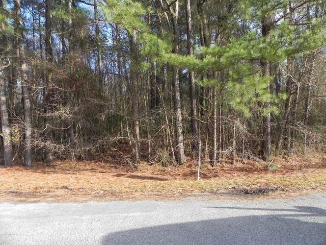 306 Woodhaven Drive, Goldsboro, NC 27530 (#73858) :: The Beth Hines Team