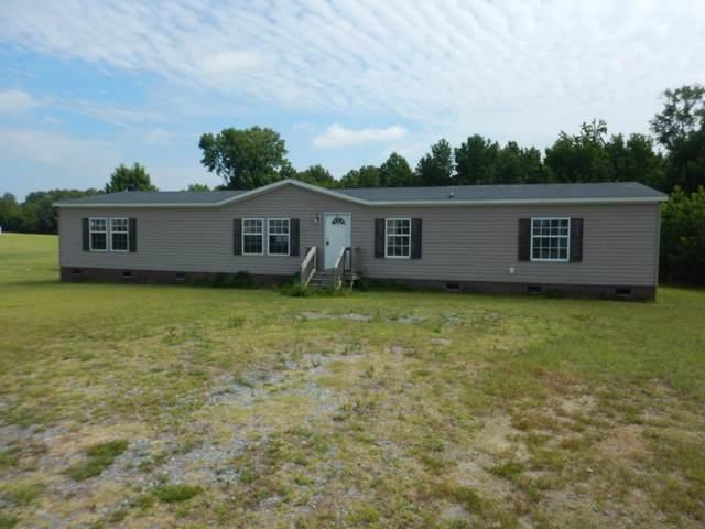 1112 Bullhead Rd, Pikeville, NC 27863 (#73869) :: The Beth Hines Team