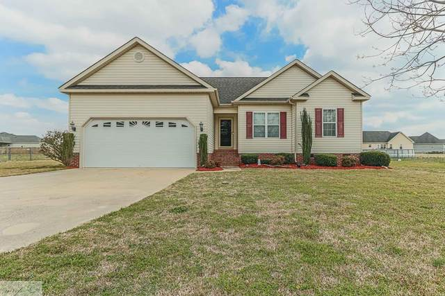 1315 Us Hwy 13S, Goldsboro, NC 27530 (#74723) :: The Beth Hines Team